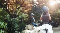 Ein Mädchen (2) stürzte von einem Pony und verletzte sich dabei tödlich. (Symbolfoto) (Foto)