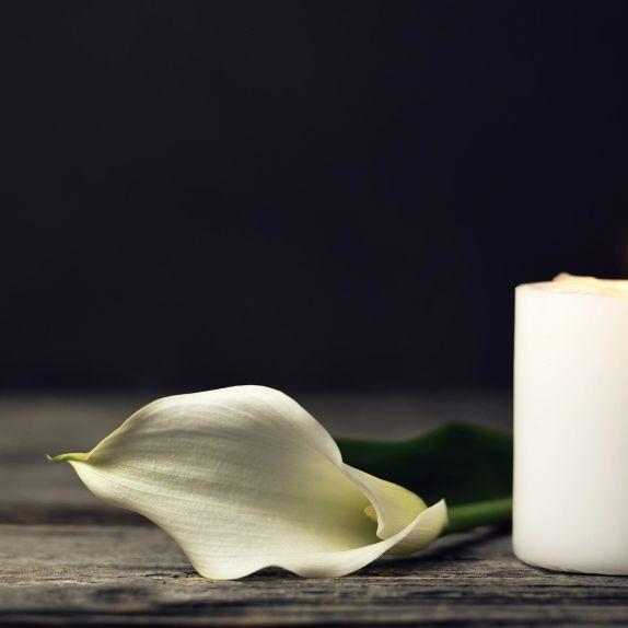 """""""Hawaii Five-0""""-Star stirbt nach Schlaganfall (Foto)"""