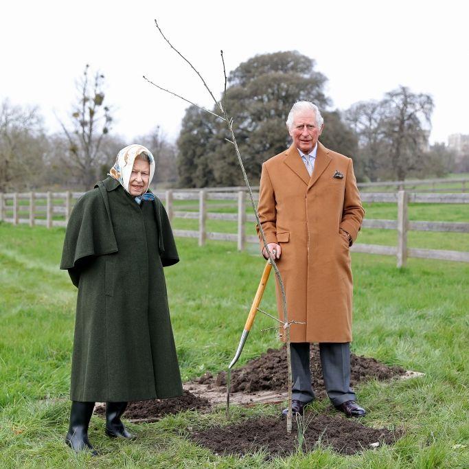 Monarchie verschlankt! So radikal will Prinz Charles das Königshaus verändern (Foto)