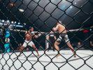 Justin Thornton hat den Kampf nicht überlebt. (Foto)