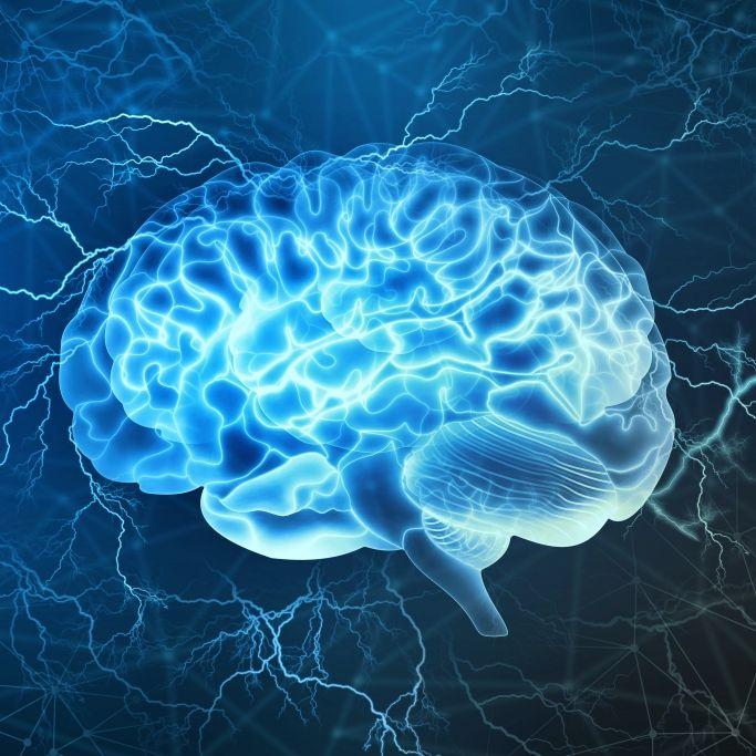 Schon 6 Tote! Mysteriöse Hirnkrankheit breitet sich aus (Foto)