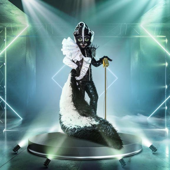 TMS-Fans sicher! DAS ist der Promi im Stinktier-Kostüm (Foto)