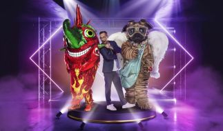 """The Masked Singer"" 2021 im TV + Live-Stream"