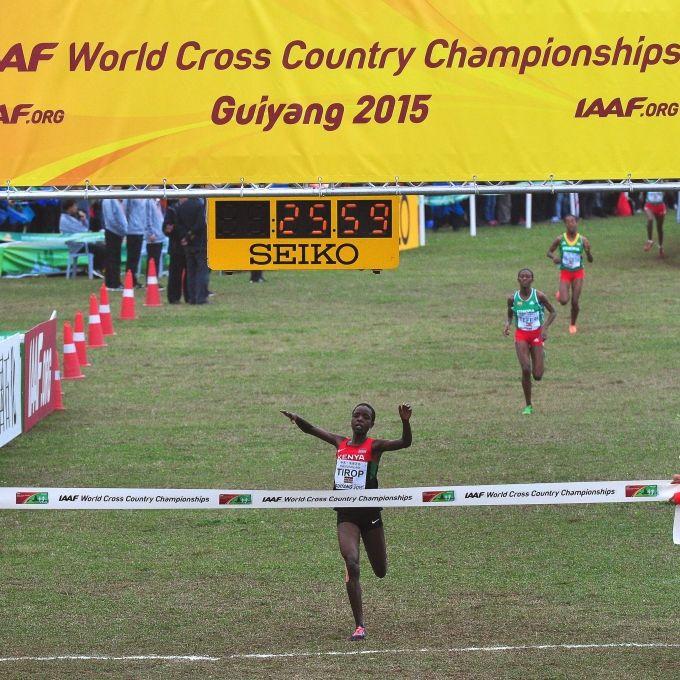 Weltklasse-Läuferin ermordet! Profi-Sportlerin (25) erstochen aufgefunden (Foto)