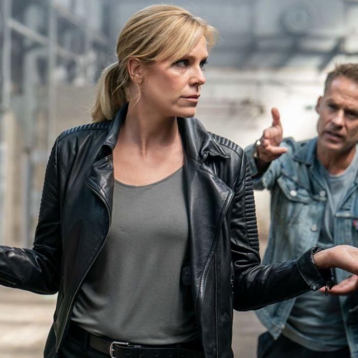 Wiederholung von Episode 410, Staffel 22 online und im TV (Foto)