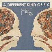 Das dritte Album in drei Jahren. Auch bei A Different Kind Of Fix gilt: Bleibt alles anders.