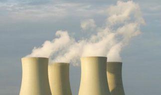 Abriss von Atomkraftwerken (Foto)