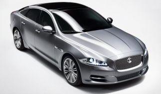 Alles außer Jaguar (Foto)