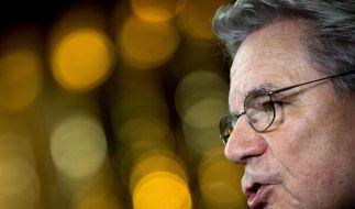 Altmaier Umweltminister - Gauck will mehr Einsatz für Energiewende (Foto)