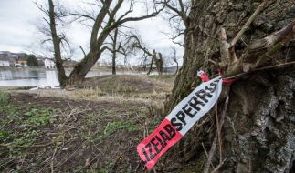 Am Donauufer nahe Ingolstadt wurde die 22-jährige Anastasia im Wasser gefunden. (Symbolbild) (Foto)