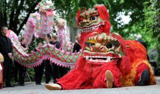 Am 8. Februar beginnt in China und vielen anderen fernöstlichen Ländern das Jahr des Affen. (Foto)