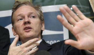 Analyse sieht Wikileaks als Chance für Demokratie (Foto)