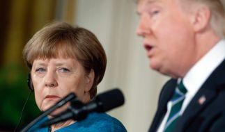 Angela Merkel hat nach ihrem Antrittsbesuch bei Trump viel Lob bekommen. (Foto)