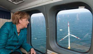 Angela Merkel besichtigt einen Windpark (Foto)