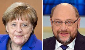Angela Merkel und Martin Schulz haben viele Gemeinsamkeiten miteinander. (Foto)