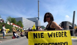 Anti-Atom-Demo am Tschernobyl-Jahrestag (Foto)