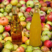 Apfelsaft besteht komplett aus Früchten, ein Apfelnektar hingen nur zu 50 Prozent. Und ein Apfelgetränk enthält 30 Prozent des Fruchtsaftes. (Foto)