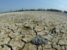 Apokalypse (Foto)