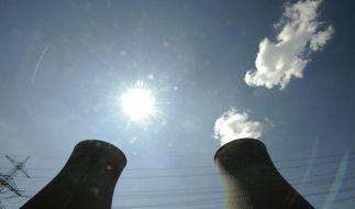 Atomkraft ade (Foto)