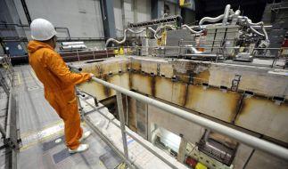 Atomkraftwerk Würgassen (Foto)