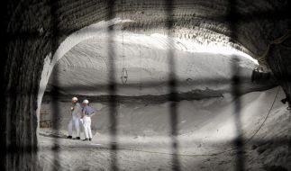 Atommülllager Asse (Foto)