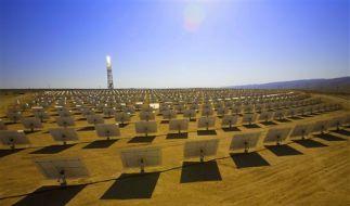 Auch deutsche Konzerne planen ein riesiges Solarkraftwerk in der Wüste. (Foto)