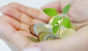 Auch wenig aufwendige Geldanlagen brauchen Pflege (Foto)