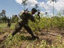 Auck Koka wird in der südamerikanischen Andenregion längst legal angebaut. (Foto)