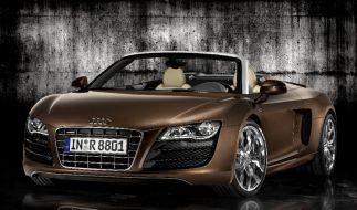 Audi R8 Spyder (Foto)