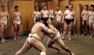Aufregung in Japan: Sumo tief in der Krise (Foto)