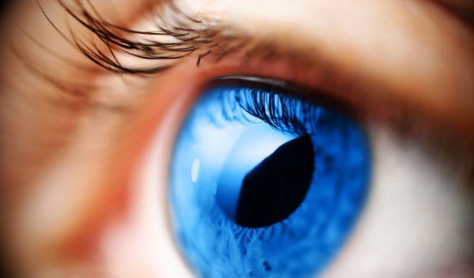 Auge (Foto)