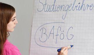 Bafög lässt sich jetzt bundesweit online beantragen. (Foto)