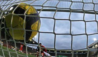 Ball im Tor (Foto)