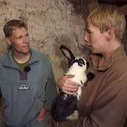 Bauer Denny (links) erklärt Timo, dass die Tiere auf seinem Hof nicht zum Kuscheln da sind, sondern im Kochtopf landen.