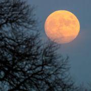 So lassen Sie die Pfunde mit der Mond-Diät purzeln (Foto)