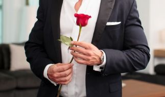 Bei RTL sucht der Bachelor im TV die Liebe seines Lebens. (Foto)