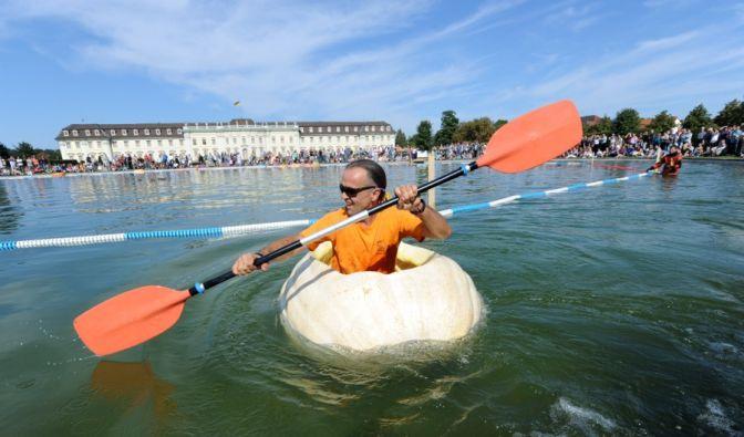Bei schönstem Wetter wagen sich 40 Hobbysportler in Riesenkürbissen auf den Ludwigsburger See, um den Titel schnellster Kürbis zu ergattern. Neben einem ordentlichen Paddelschlag ist vor allem eines wichtig ... (Foto)