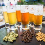 Traumjob gesucht? HIER werden Sie fürs Biertrinken bezahlt (Foto)