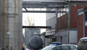 Bis zu 150000 Tonnen Tierfutter mit Dioxin verseucht (Foto)