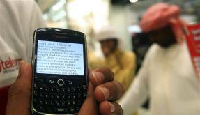 Blackberry (Foto)