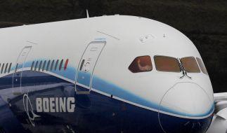 Boeing Dreamliner (Foto)