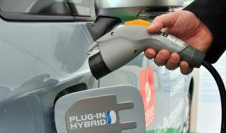 Boom für Elektroautos fragwürdig (Foto)
