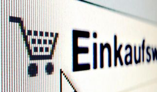 Boomender Onlinehandel: Immer mehr kaufen im Netz (Foto)