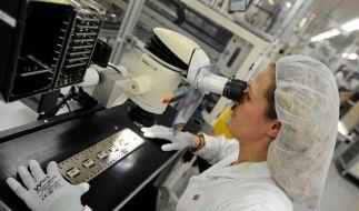 Bosch plant mit gedämpfter Wachstumsprognose (Foto)