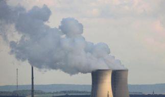 Brennelementesteuer bleibt erhalten (Foto)