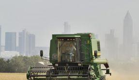Brüssel will deutschen Bauern weniger zahlen (Foto)