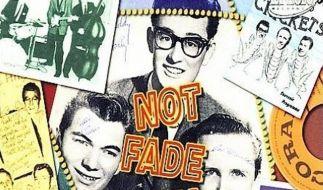 Buddy Holly starb vor 50 Jahren (Foto)
