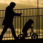 Bundestag beschließt Steuersenkung und Familienpaket (Foto)