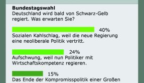 Bundestagswahl.jpg (Foto)