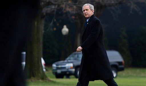 Bush (Foto)
